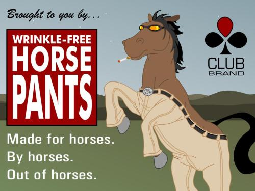 wrinkle-free horse pants