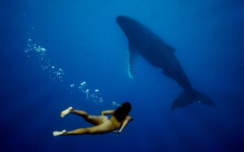NSFW nude with whale