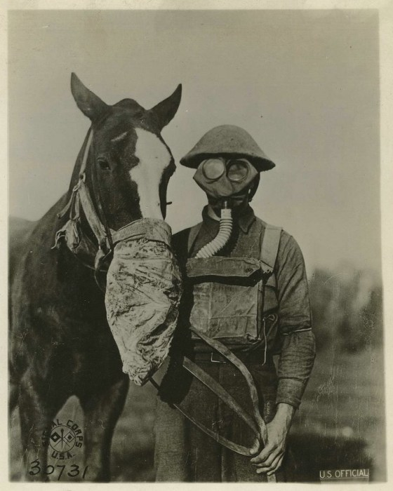U.S. Official Horse Gas Mask