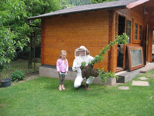 bee hive vs litle girl