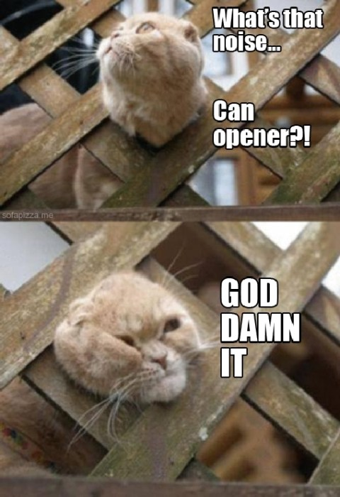 can opener - god damn it