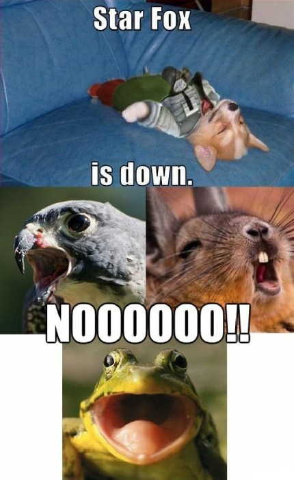 star fox is down