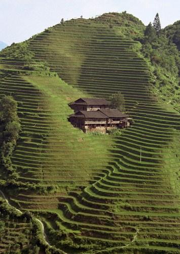 how to farm on a mountain