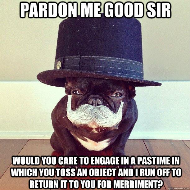 pardon me good sir - dog pastime.jpg