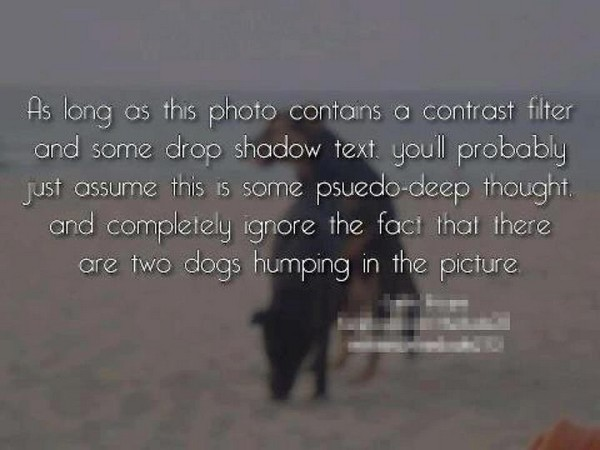 phot with drop shadow text.jpg