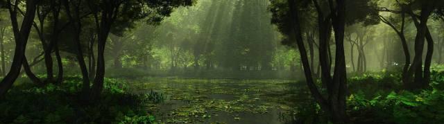 forest lake wallpaper.jpg