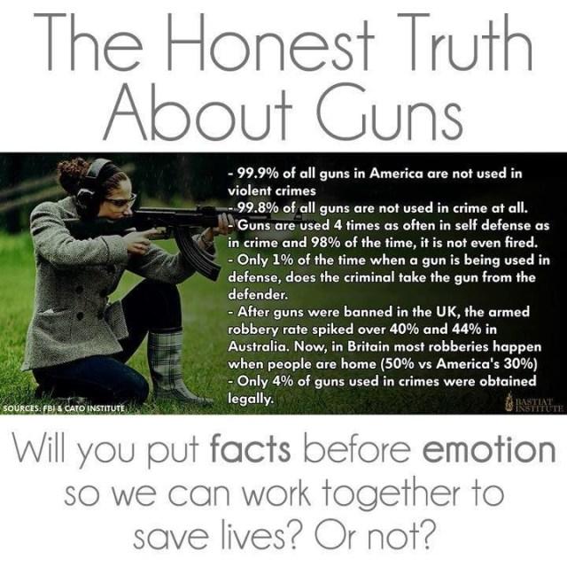 the honest truth about guns.jpg