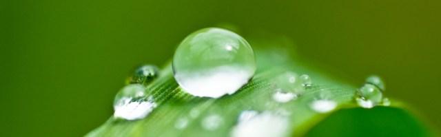 water droplets.jpg