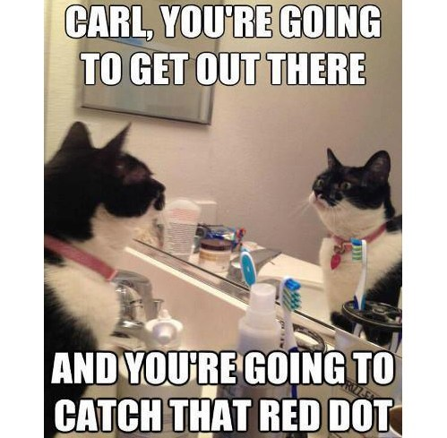 Get out there and catch that red dot.jpg
