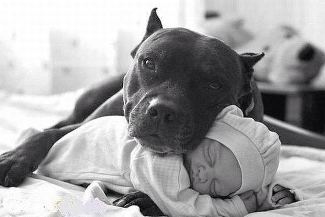 pitts love babies.jpg