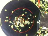 glock shots 8-8-2013