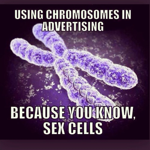 Using Chromosomes in Advertising.jpg