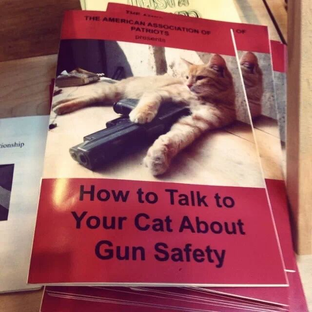 How to talk to your cat about gun safety.jpg