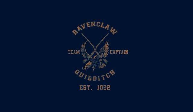 Ravenclaw Quidditch.jpg
