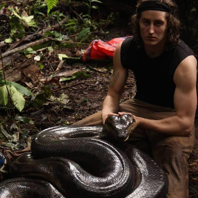 A large snake.jpg