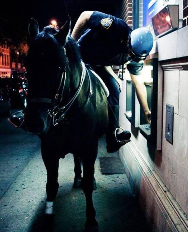 ATM Horse.jpg