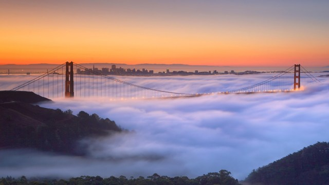 Golden Gate Fog.jpg