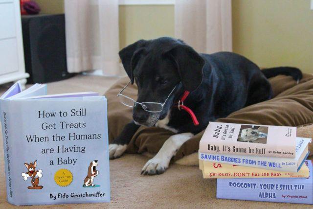 Baby Treats.jpg