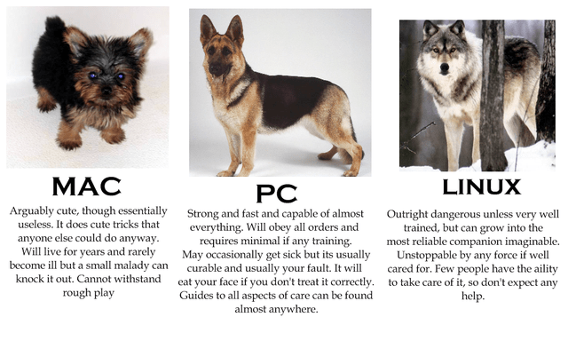 if computers were dogs.png
