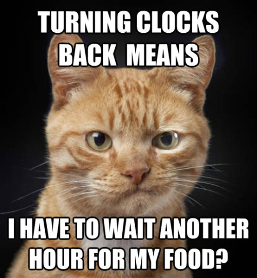 Turning clocks back.jpg