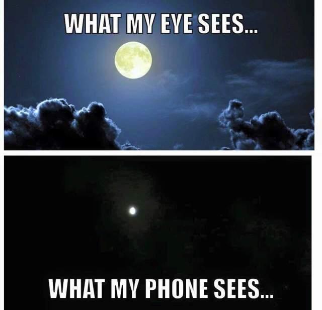 why my eyes see.jpg