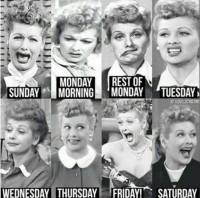 Lucie's Days of the Week.jpg