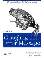 googling the error message.jpg