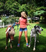 walking the dog and horse.jpg