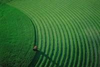 Yann Arthus-Bertrand 6.jpg