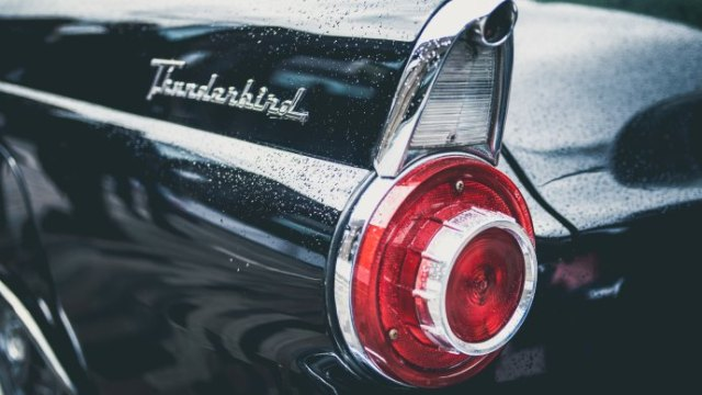 Thunderbird wallpaper.jpg