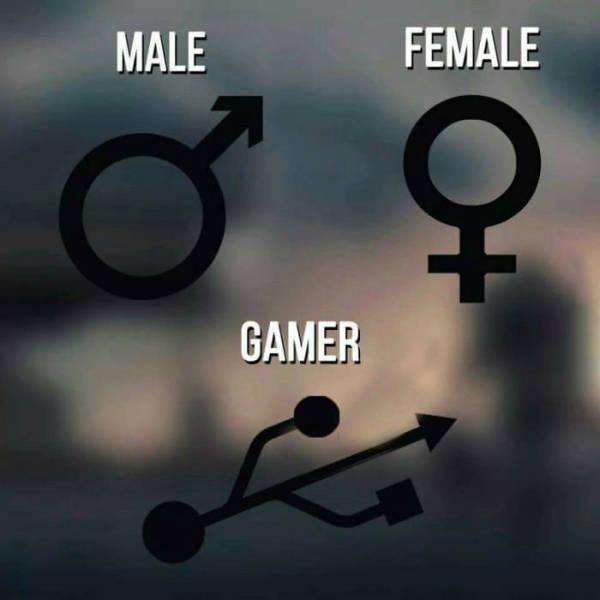 male female gamer.jpg