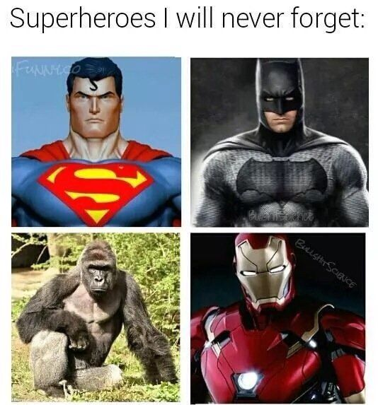 superheroes I will never forget.jpg