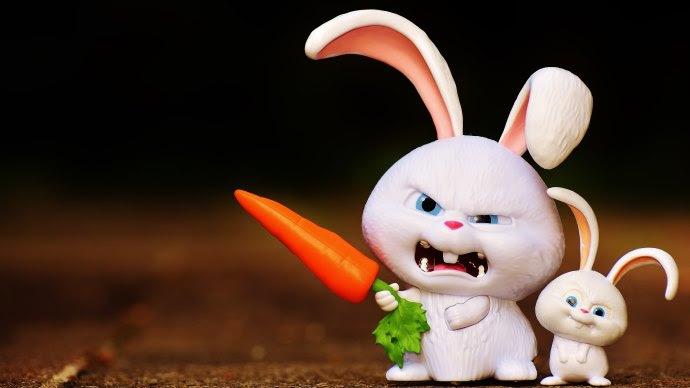 Angry Funny Bunny.jpg