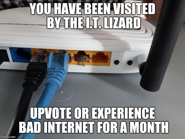 you have been visited by the IT Lizard.jpg