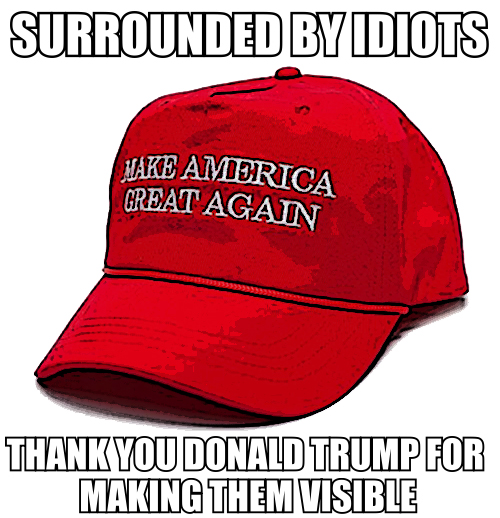 surrounded-by-idiots