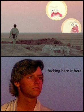 Morty Wars.jpg