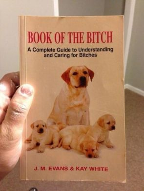 Book of the Bitch.jpg