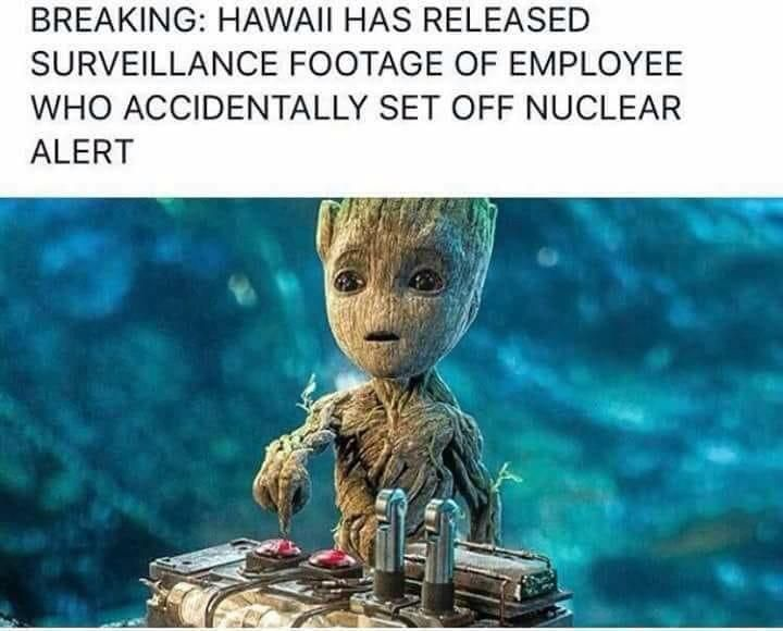 Surveillance Footage of Employee Who Accidentally Set Off Nuclear Alert
