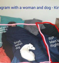 dog size diagram [ 1280 x 720 Pixel ]
