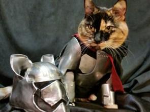 Chromed Kitty.jpg
