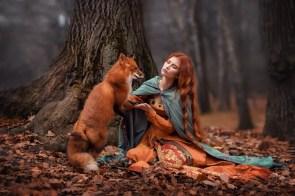 messenger fox.jpg
