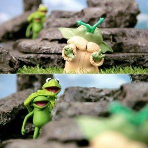 Frog Eater