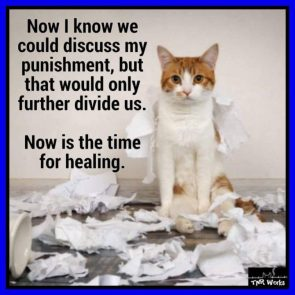 Republican Cats