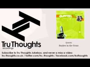 Quantic – Snakes in the Grass