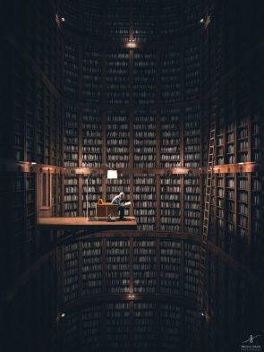 Big Library by Nemanja Sekuli