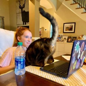 The cat loves to show her  during the daughters virtual clASSes