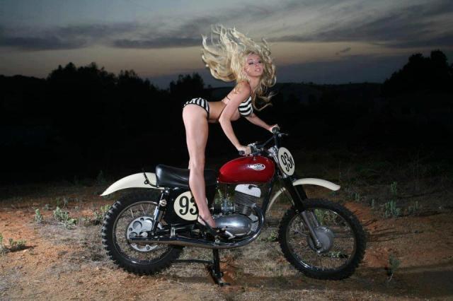 bike-150933_490148231032061_1007561097_n.jpg (83 KB)