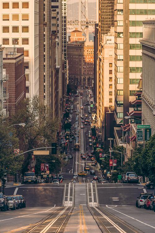 streetsofsf.jpg (303 KB)