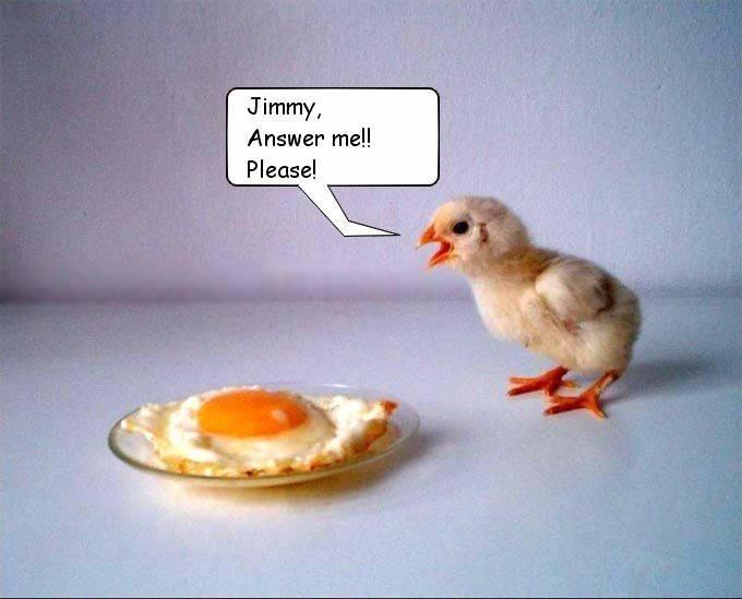 jimmy.jpg (37 KB)