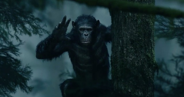 Dawn-of-the-Planet-of-the-Apes-International-Trailer-1.jpg (134 KB)